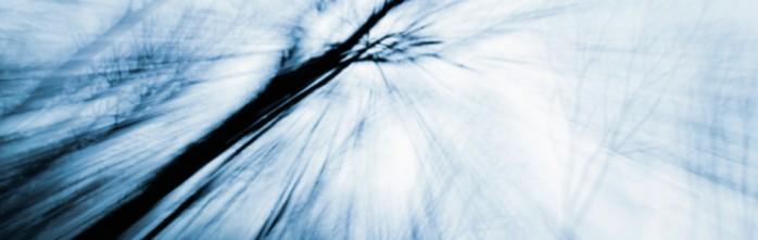 Blog Single Image